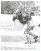 Scott Cassidy G1 Limited Stock Rare Toronto Blue Jays 8X10 Photo