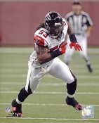 Mike Peterson Atlanta Falcons 8x10 Photo