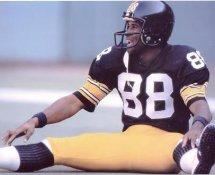 Lynn Swann Pittsburgh Steelers 8x10 Photo