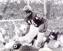 Gale Sayers Chicago Bears 8X10 Photo