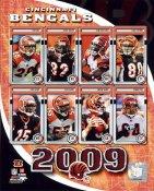 Bengals 2009 Cincinnati Team 8x10 Photo