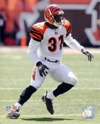 Roy Williams Cincinnati Bengals 8X10 Photo