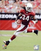 Tim Hightower Arizona Cardinals 8X10 Photo