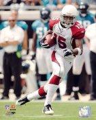 Steve Breaston LIMITED STOCK Arizona Cardinals 8X10 Photo