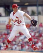 Anthony Reyes G1 Limited Stock Rare St. Louis Cardinals 8X10 Photo