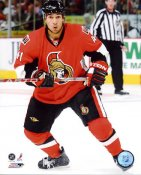 Jonathan Cheechoo LIMITED STOCK Ottawa Senators 8x10 Photo