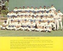 Dodgers 1973 LA Team Original Stadium Photo With Facsimile Autographs on Back 8X10 Photo