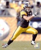 Troy Polamalu Pittsburgh Steelers 8x10 Photo  LIMITED STOCK -