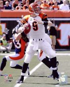 Carson Palmer LIMITED STOCK Cincinnati Bengals 8X10 Photo