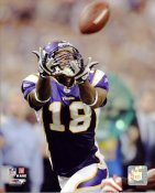 Sidney Rice LIMITED STOCK Minnesota Vikings 8X10 Photo