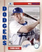 Bill Mueller G1 Limited Stock Rare Dodgers  8X10 Photo