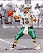 """Dan Marino """"Spotlight""""  Miami Dolphins 8X10 Photo LIMITED STOCK"""