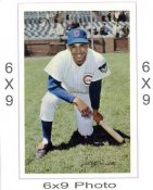 Billy Williams Chicago Cubs 6x9 Original 1960 -1970 Souvenir Photo 6X9 Photo