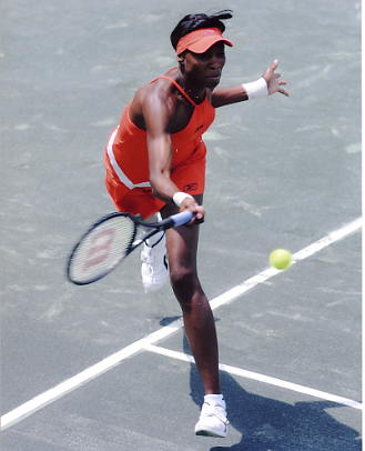 Venus Williams 8X10 Photo