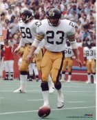 Mike Wagner Pittsburgh Steelers 8x10 Photo