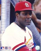 Bob Gibson St. Louis Cardinals 8x10 Photo  LIMITED STOCK