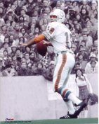 Bob Griese Miami Dolphins 8X10 Photo  LIMITED STOCK
