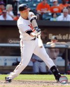 Nolan Reimold LIMITED STOCK Baltimore Orioles 8X10 Photo