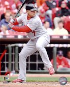 Matt Holliday LIMITED STOCK St. Louis Cardinals 8X10 Photo