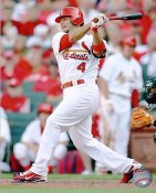 Yadier Molina LIMITED STOCK St. Louis Cardinals 8X10 Photo