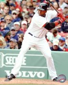 David Ortiz LIMITED STOCK Boston Red Sox 8x10 Photo