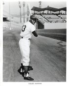Willie Crawford Original Team Issue Photo 8x10 LA Dodgers