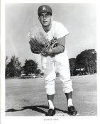 Vincente Romo Original Team Issue Photo 8x10 LA Dodgers
