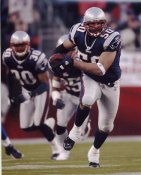 Mike Vrabel G1 Limited Stock Rare Patriots 8X10 Photo