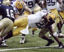 Jamarcus Russell G1 Limited Stock Rare LSU 8X10 Photo