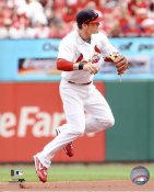 Brendan Ryan LIMITED STOCK St. Louis Cardinals 8X10 Photo