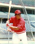 Tony Perez G1 Limited Stock Rare Reds 8X10 Photo