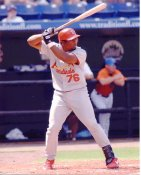 Hector Luna St. Louis Cardinals 8X10 Photo
