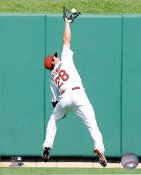 Colby Rasmus St. Louis Cardinals 8X10 Photo