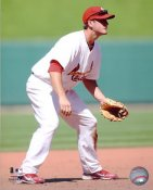 David Freese LIMITED STOCK St. Louis Cardinals 8X10 Photos