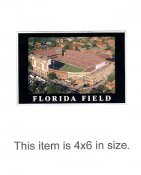 4X6 POSTCARD Florida Field Ben Hill Griffin Stadium 4x6 POSTCARD