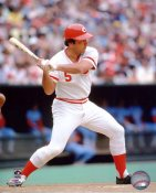 Johnny Bench Cincinnati Reds 8X10 SATIN Photo