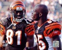 Chad Ochocinco & Terrell Owens Cincinnati Bengals 8X10 Photo