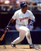 Tony Gwynn San Diego Padres 8x10 Photo