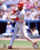 Ozzie Smith St. Louis Cardinals 8X10 Photo