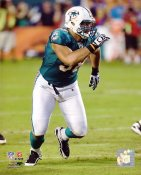 Jared Odrick Miami Dolphins 8X10 Photo