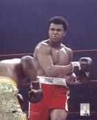Joe Frazier vs Muhammad Ali 1974 Madison Square Garden 8x10 Photo