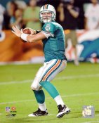 Chad Henne Miami Dolphins 8X10 Photo