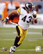 Troy Polamalu LIMITED STOCK Steelers 8x10 Photo