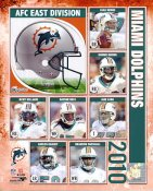 Dolphins 2010 Miami Team 8X10 Photo