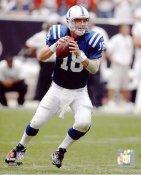 Peyton Manning Indianapolis Colts SATIN 8X10 Photo