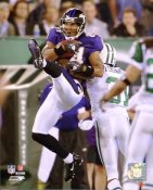 TJ Houshmandzadeh Baltimore Ravens 8X10 Photo