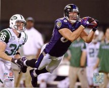 Todd Heap LIMITED STOCK Baltimore Ravens 8X10 Photo