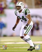 Darrelle Revis LIMITED STOCK New York Jets 8X10 Photo