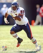 Lance Briggs LIMTED STOCK Chicago Bears 8X10 Photo