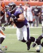 Haloti Ngata Baltimore Ravens 8X10 Photo